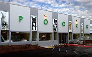 Hotel para Cachorro em Sunnyvale CA